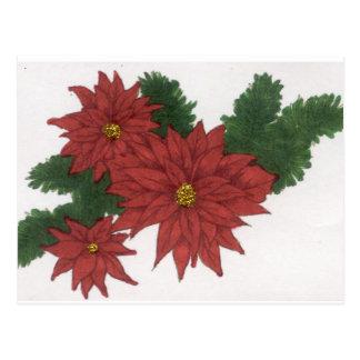 Red Poinsettia Flower Christmas Design Art Floral Postcard