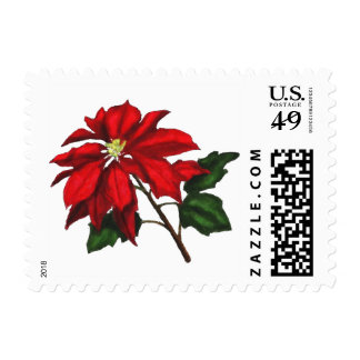Red Poinsettia Flower Postage Stamp