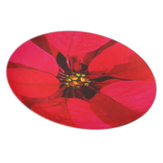 Red Poinsettia Holiday Plate