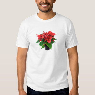 Red Poinsettia on a White Background T Shirt