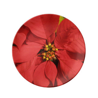 Red Poinsettia Porcelain Plate