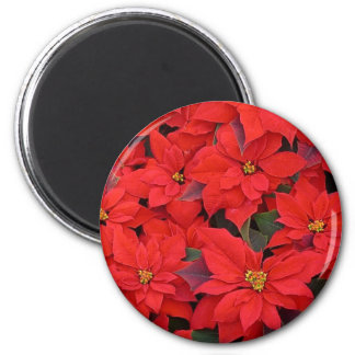 Red Poinsettias I Christmas Holiday Floral Photo 2 Inch Round Magnet