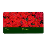 Red Poinsettias I Christmas Holiday Floral Photo Label
