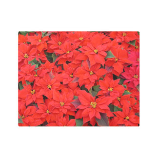 Red Poinsettias I Christmas Holiday Floral Photo Metal Photo Print