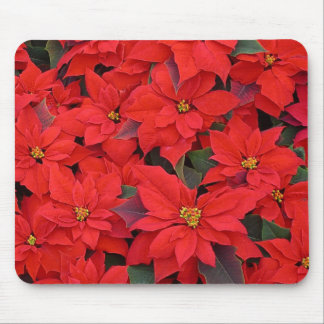 Red Poinsettias I Christmas Holiday Floral Photo Mouse Pad