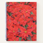 Red Poinsettias I Christmas Holiday Floral Photo Notebook