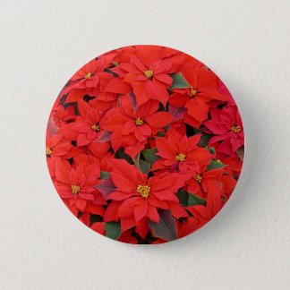 Red Poinsettias I Christmas Holiday Floral Photo Pinback Button