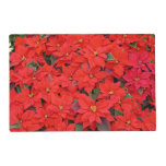 Red Poinsettias I Christmas Holiday Floral Photo Placemat