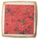 Red Poinsettias I Christmas Holiday Floral Photo Square Shortbread Cookie