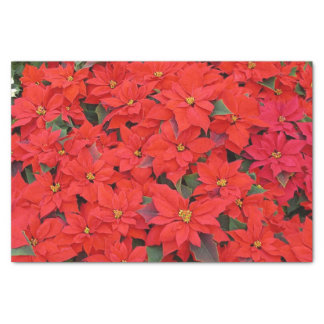Red Poinsettias I Christmas Holiday Floral Photo Tissue Paper