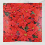 Red Poinsettias I Christmas Holiday Floral Photo Trinket Trays