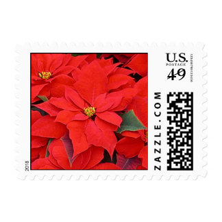 Red Poinsettias I Christmas Holiday Floral Postage Stamp