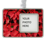 Red Poinsettias II Pretty Christmas Holiday Floral Christmas Ornament
