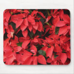 Red Poinsettias II Pretty Christmas Holiday Floral Mouse Pad