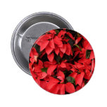 Red Poinsettias II Pretty Christmas Holiday Floral Pinback Button