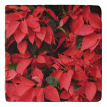 Red Poinsettias II Pretty Christmas Holiday Floral Trivet