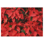 Red Poinsettias II Pretty Christmas Holiday Floral Wood Poster