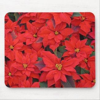 Red Poinsettias Mousepad