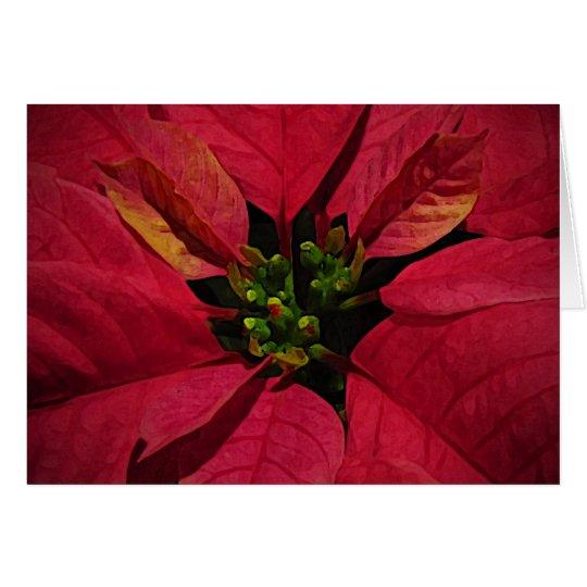 Red Pointsettia Seasons Greetings Card