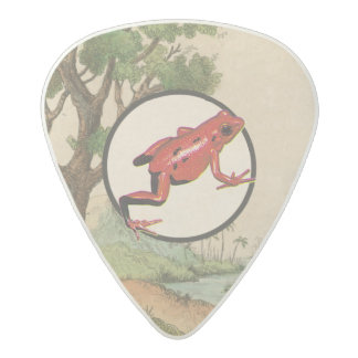 Red Poison Dart Frog Natural Habitat Illustration Acetal Guitar Pick