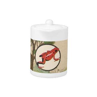 Red Poison Dart Frog Natural Habitat Illustration