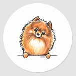 Red Pomeranian Paws Up Stickers