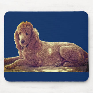 RED POODLE AT REST MOUSE PAD