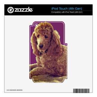 RED POODLE AT REST SKINS FOR iPod TOUCH 4G