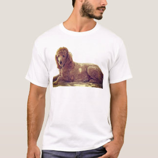 RED POODLE AT REST T-Shirt