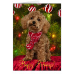 Red Poodle Christmas Card