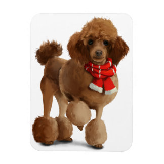 Red poodle magnet
