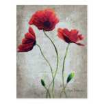Red Poppies 3 Postcard