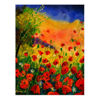 red poppies 45 post card