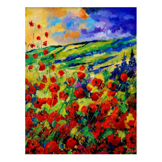 red poppies 78 postcard