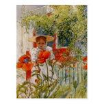Red Poppies and Little Girl Postcard