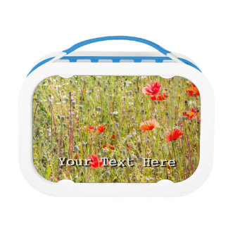 Red Poppies and Wildflowers Floral Field Lunch Box