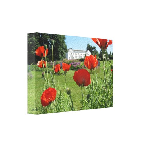 Red Poppies at Kew Gardens Canvas Print