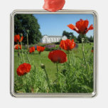 Red Poppies at Kew Gardens Ornament
