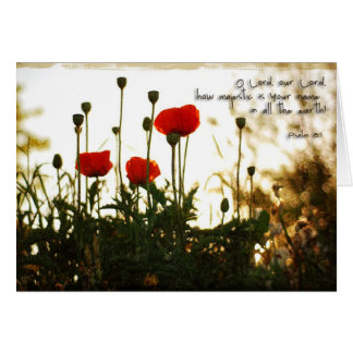 Red Poppies at Sunset Card