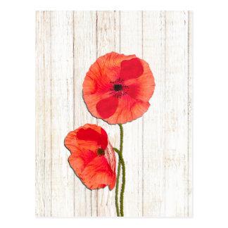 Red poppies barn wood background poppy barn wood postcard