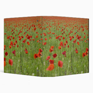 Red poppies blooming in field 3 ring binder