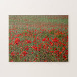 Red Poppies Challenging Jigsaw Puzzle