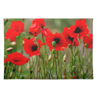 Red Poppies Cloth Placemats Cloth Place Mat