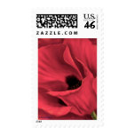 Red Poppies Flower Art Painting - Multi Postage