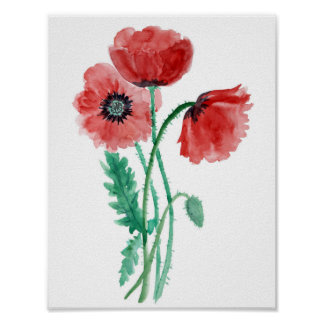 Red poppies in watercolor poster