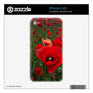 Red Poppies iPhone 4/4S Skin Decals For The iPhone 4