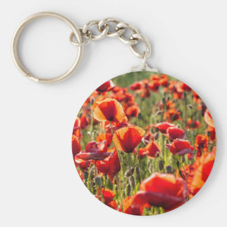 Red poppies on a canola field basic round button keychain