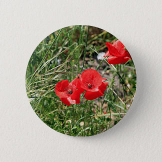 Red poppies on El Camino Pinback Button