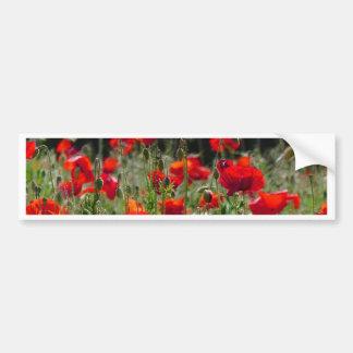 Red Poppies / poppy field  /  Roter Mohn Bumper Sticker