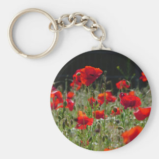 Red Poppies / poppy field  /  Roter Mohn Keychain